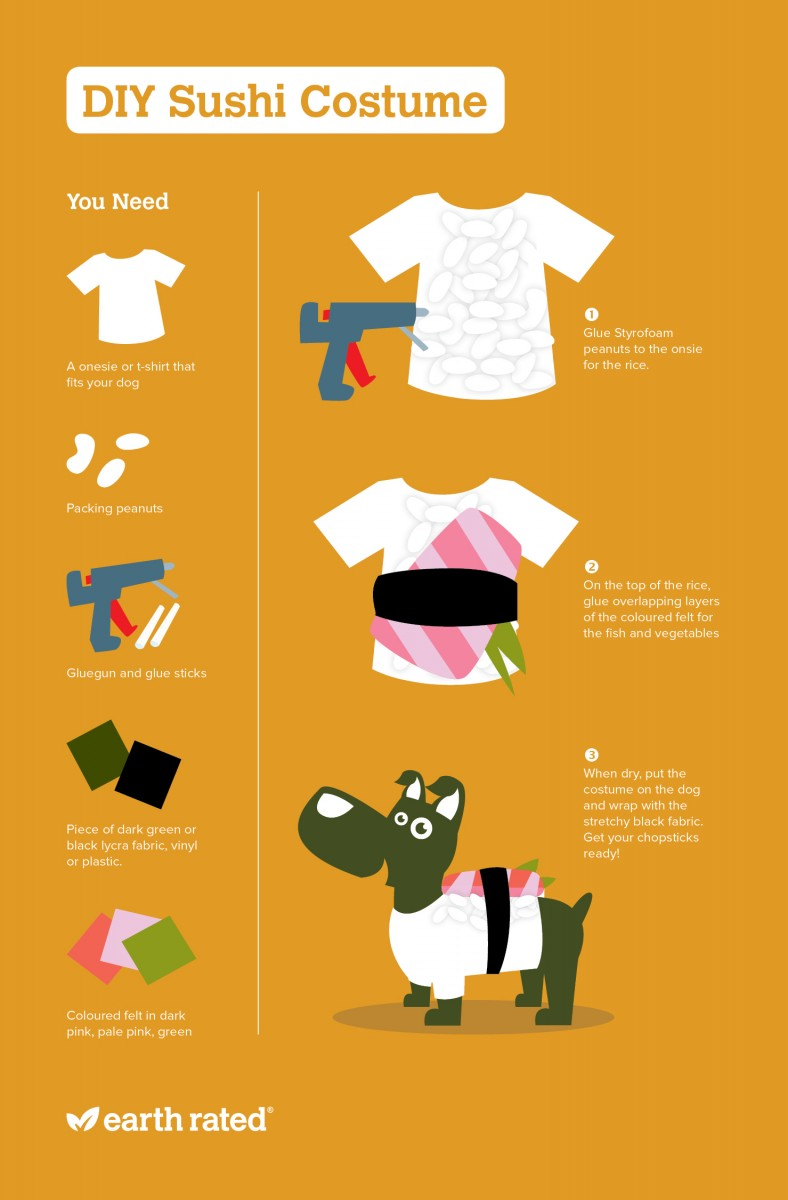 Diy dog sushi costume solutioingenieria Choice Image
