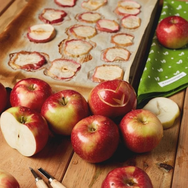 How to make dog-friendly dried apple slices