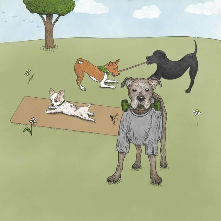 Drawing of 2 Earth Rated office dogs playing tug of war, another is stretching on a Unleashed yoga mat, and 1 dog is holding up a dumbell