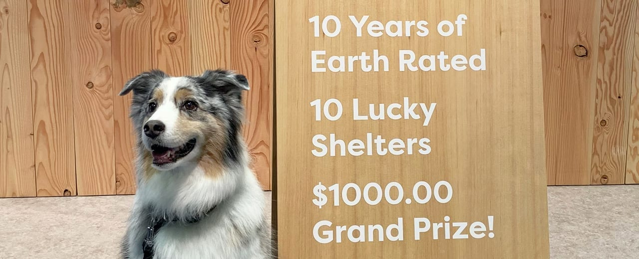 10 years of Earth Rated, 10 lucky shelters! (Super Zoo Edition)
