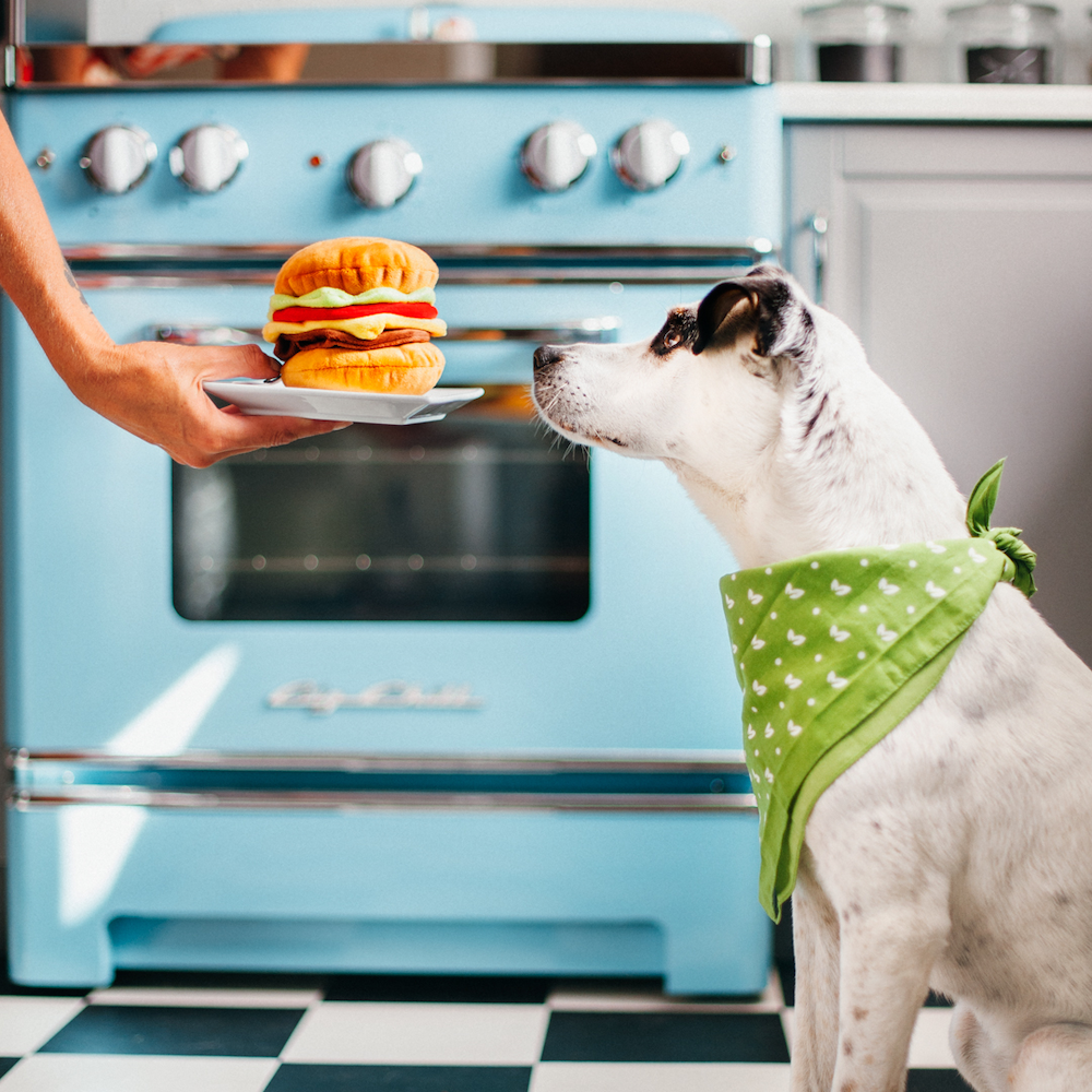 NEVER Feed Your Dog These Toxic Foods