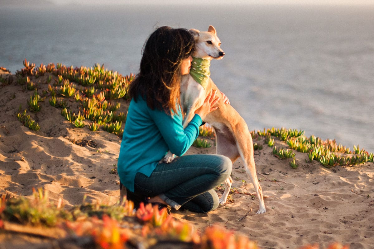 How to Reduce Stress With Your Dog