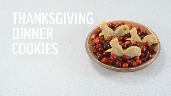 Thanksgiving Treat Recipe for Dogs